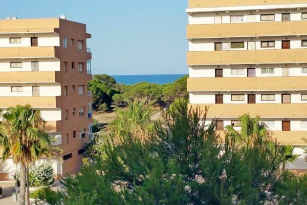 Apartment - Resale - La Mata - Pinomar