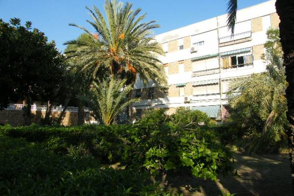 Apartment - Resale - Alicante - Juan XXIII